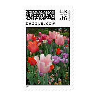 Tulips and Pansies 2 Postage Stamps