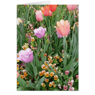 Tulips and Pansies Card