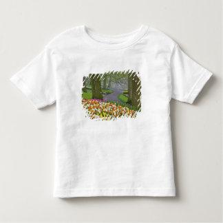 Tulips and roadway, Keukenhof Gardens, Lisse, T Shirt