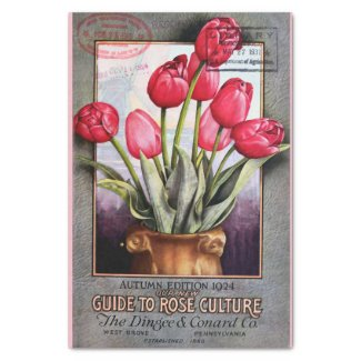 Tulips and Roses Catalog 10