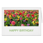 Tulips Birthday Cards