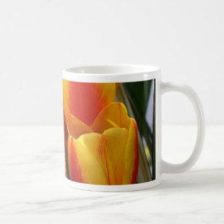 Tulips, bright orange! coffee mug