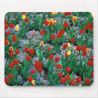 tulips by TDGallery Mouse Pad