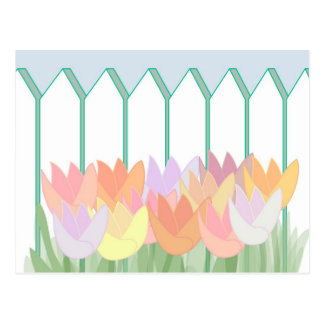 Tulips By The Picket Fence Postcard