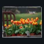 "Tulips Calendar<br><div class=""desc"">All these photos taken by &#169;Juliana RW.</div>"