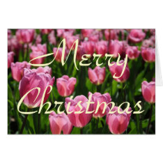 Tulips Christmas Card at Zazzle