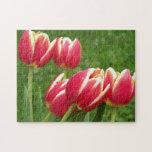 Tulips Closeup Puzzle