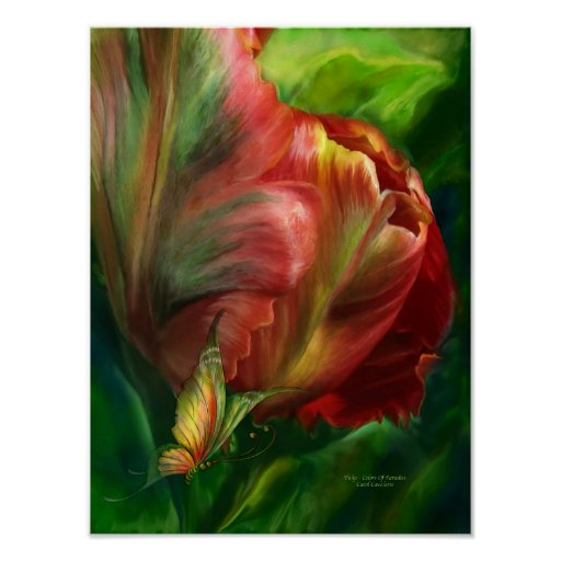 Tulips-Colors Of Paradise Poster