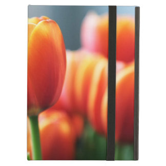 Tulips Cover For iPad Air