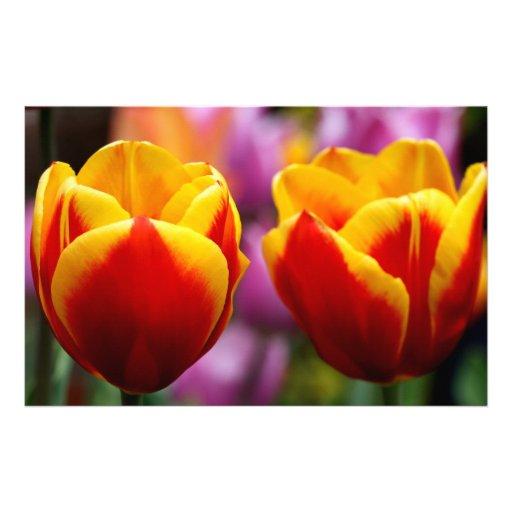 Tulips Custom Stationery