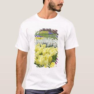 Tulips, daffodils, and Grape Hyacinth flowers, T-Shirt