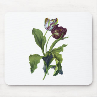 Tulips Drawn From Nature by Gerard van Spaendonck Mouse Pad