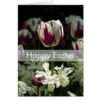 Tulips Easter Card   Osterkarte Tulpen