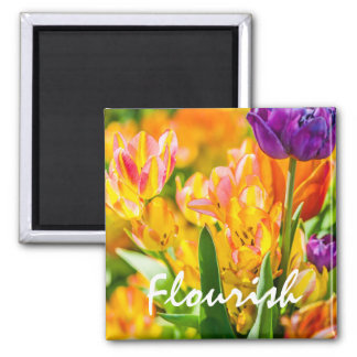 Tulips Enchanting 01 2 Inch Square Magnet