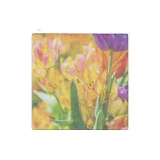 Tulips Enchanting 01 Stone Magnet