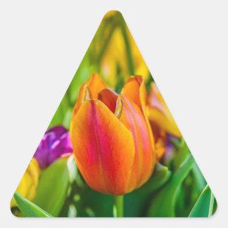 Tulips Enchanting Triangle Sticker