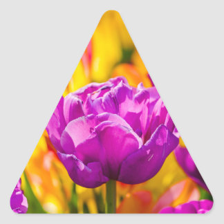 Tulips Enchanting Violet Triangle Sticker