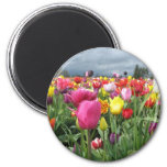 Tulips Field 2 Inch Round Magnet