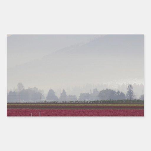 Tulips Fields in the Morning Light Rectangular Sticker