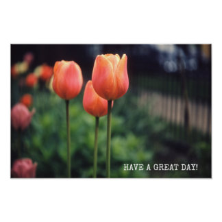 Tulips Floral Tulip Garden Spring Day Flowers Poster