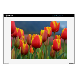 """Tulips for Mom 15"""" Laptop Decals"""
