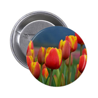 Tulips for Mom Button