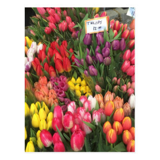 Tulips for Sale NYC Flowers Corner Bodega Photo Postcard