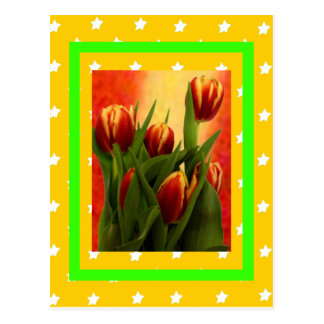 Tulips For YOU with Stars The MUSEUM Zazzle Gifts Postcard