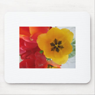 Tulips from Anna Mouse Pad