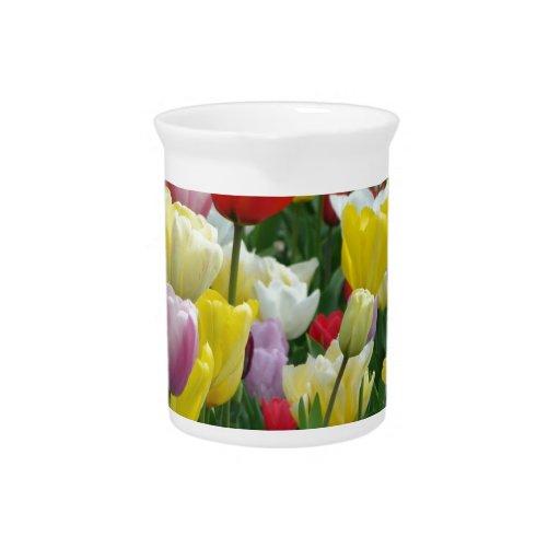 Tulips from Holland, Springtime at Keukenhof Drink Pitchers