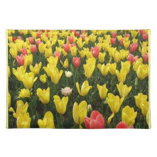 Tulips from Holland Springtime at Keukenhof Place Mat