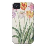 Tulips, from the 'Nassau Florilegium' (w/c on pape Case-Mate iPhone 4 Cases