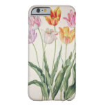 Tulips, from the 'Nassau Florilegium' (w/c on pape Barely There iPhone 6 Case