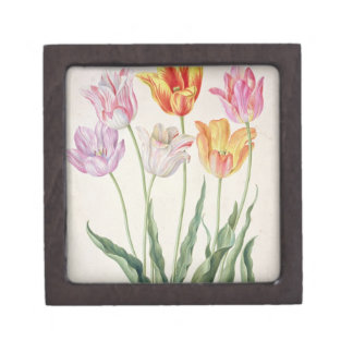 Tulips, from the 'Nassau Florilegium' (w/c on pape Keepsake Box