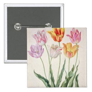 Tulips, from the 'Nassau Florilegium' (w/c on pape Pinback Button