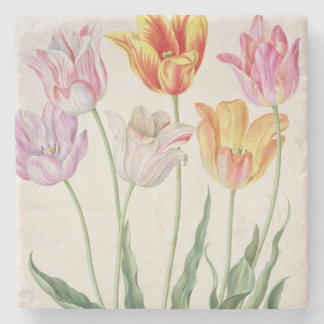 Tulips, from the 'Nassau Florilegium' (w/c on pape Stone Coaster