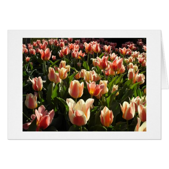 tulips galore card