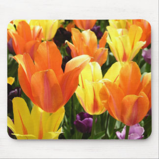 Tulips Galore Mouse Pad