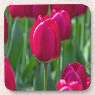 Tulips hard plastic coasters