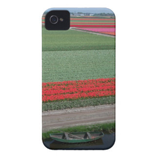 Tulips in Holland iPhone 4 Case-Mate Case