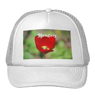 Tulips in Hungary Mesh Hat