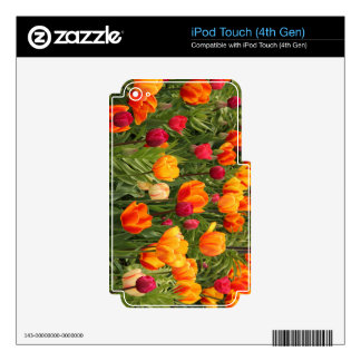 Tulips in red and yellow shades decals for iPod touch 4G