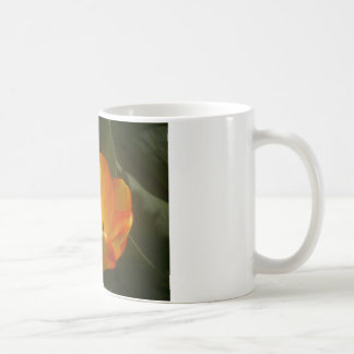 Tulips In Sun Coffee Mug