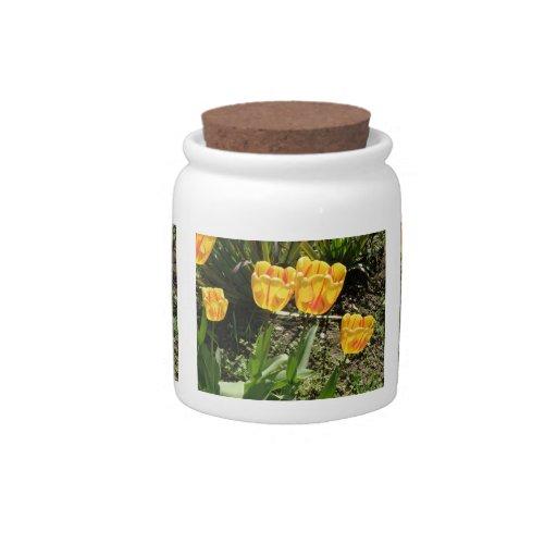 Tulips in the Sun Candy Jar