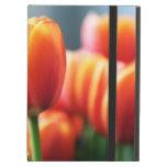 Tulips iPad Folio Case