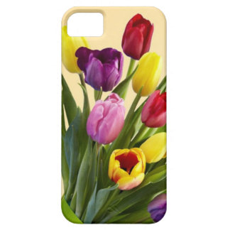 Tulips iPhone 6 Case