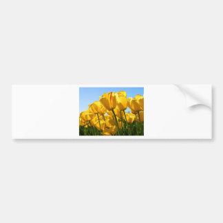 Tulips.jpg Bumper Sticker