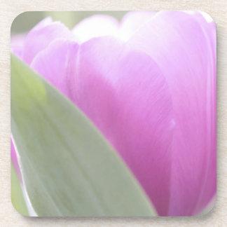 Tulips, Keukenhoff Gardens, Netherlands. 2 Beverage Coaster
