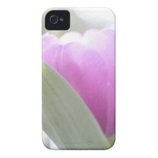 Tulips, Keukenhoff Gardens, Netherlands. 2 iPhone 4 Covers