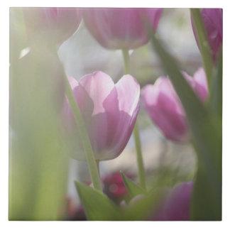 Tulips, Keukenhoff Gardens, Netherlands. Ceramic Tile